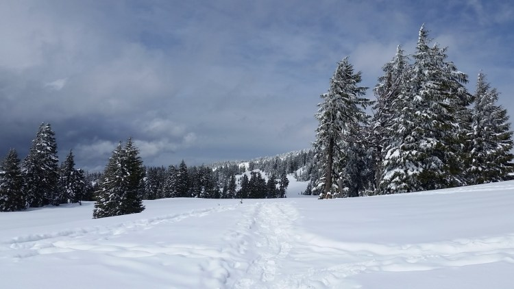 Crater Lake National Park in winter: snow filled trail with storm clouds in background