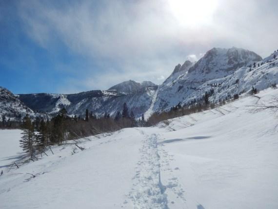 Snowshoe tracks Silver Lake CA