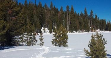 snowshoe tahoe northstar