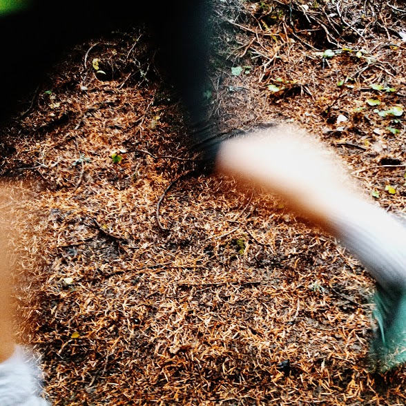 close up of runner's legs in action on the trail