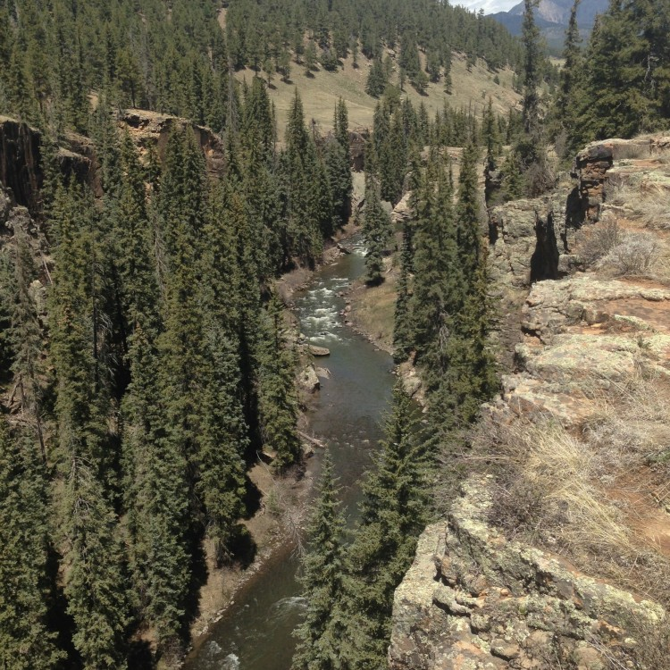 river down below surrounded by trees near Pagosa, CO
