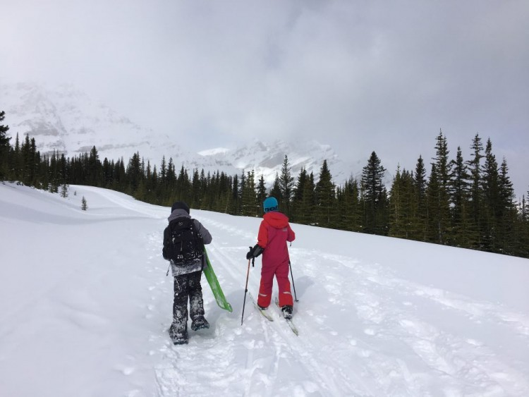 winter trail etiquette: snowshoer and skier side by side on an open winter trail