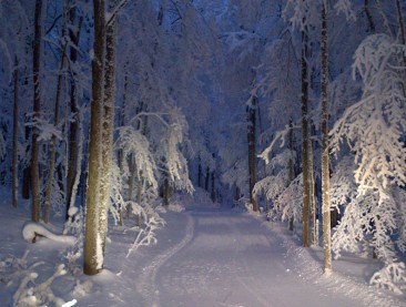 snowshoeing at night