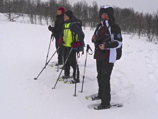 Kinga Leszczak (centre) leads us through the birch trees of Tromsøya Island