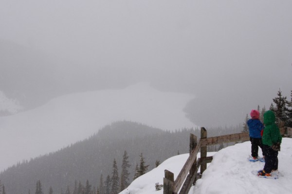 kids looking out at viewpoint at Peyto Lake in winter with clouds and snow in background