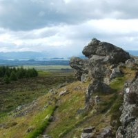 Around The Campsie Fells In Spring: A Walk On The Wild Side