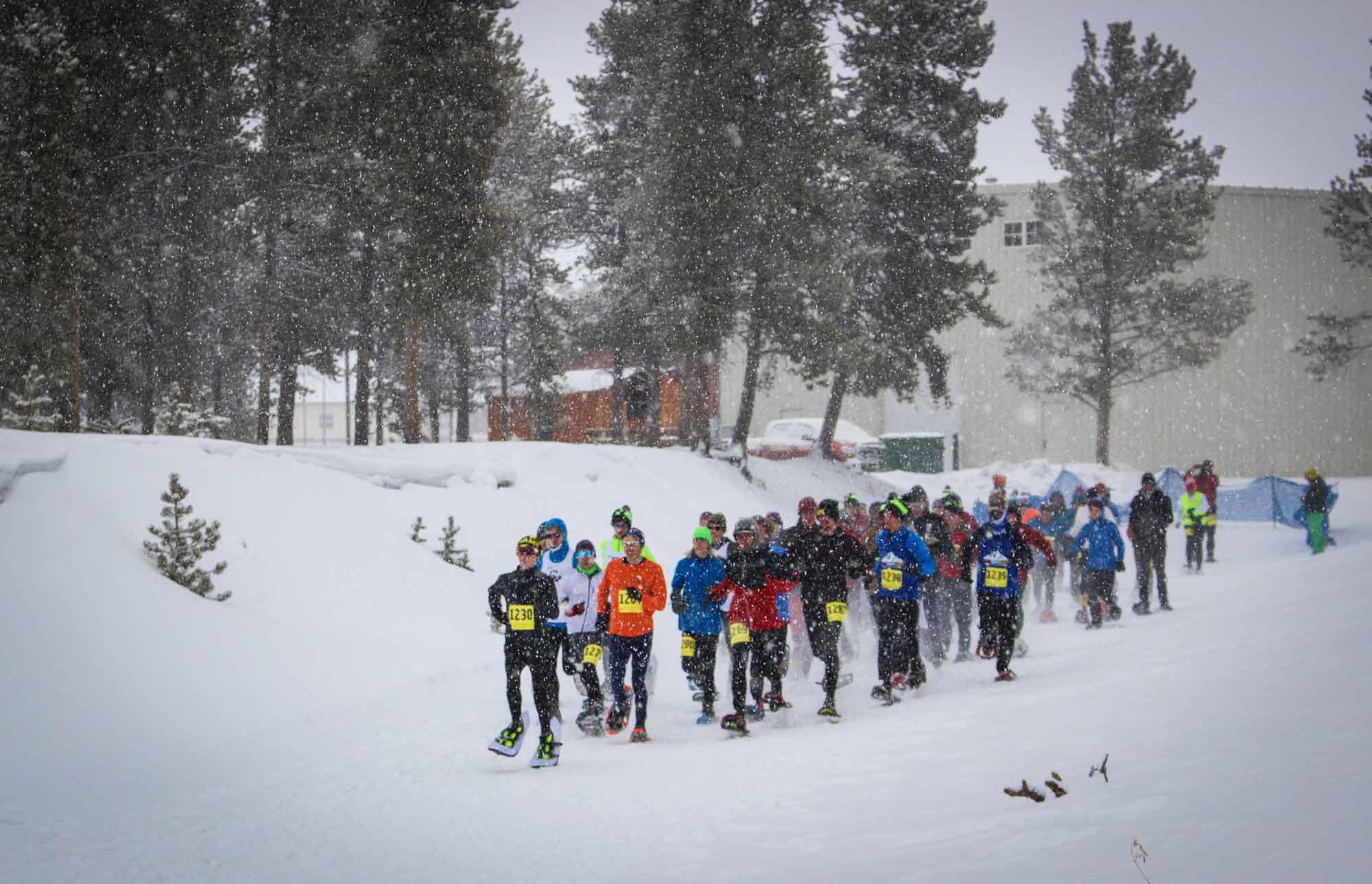 Snowshoe Champs