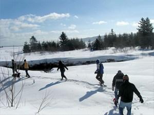 Snowshoeing_2