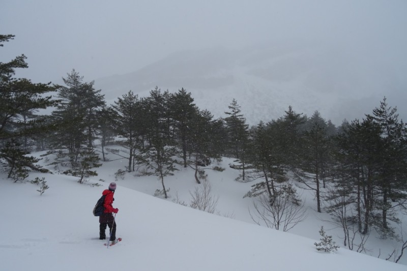 snowshoeing towards Yellow Falls in Urabandai