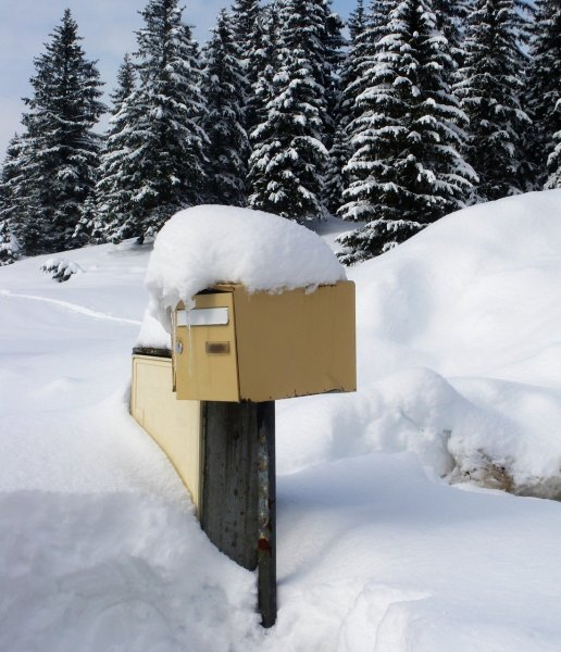 yellow mailbox covered in snow with trees in background