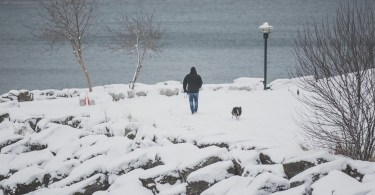 man-walking-dog-in-snow