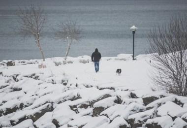 man-walking-dog-in-snow