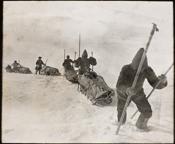 Nansen Greenland expedition: men crossing the interior of Greenland with their sleds