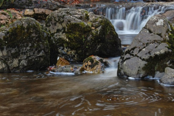 waterfall at Kirk Burn, Campsie Glen, Scotland