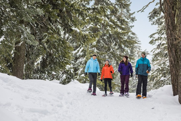 group snowshoeing in Grouse Mountain, BC - near Vancouver