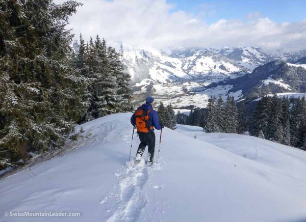 11 Jan 2015 - Monts Chevreuils, Swiss Alps