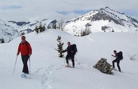 snowshoers in Alps