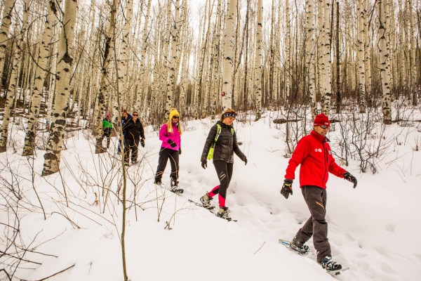 Beaver Creek Gourmet Snowshoe Adventures