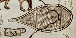 Detail from page 19 of the Codex canadensis.