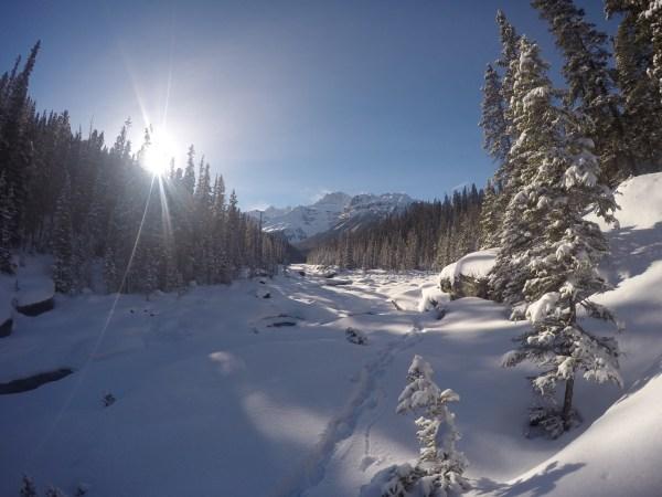 Snowy Mistaya Canyon is a winter wonderland