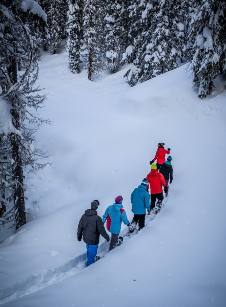 snowshoers out on the trail at Revelstoke Mountain Resort, British Columbia