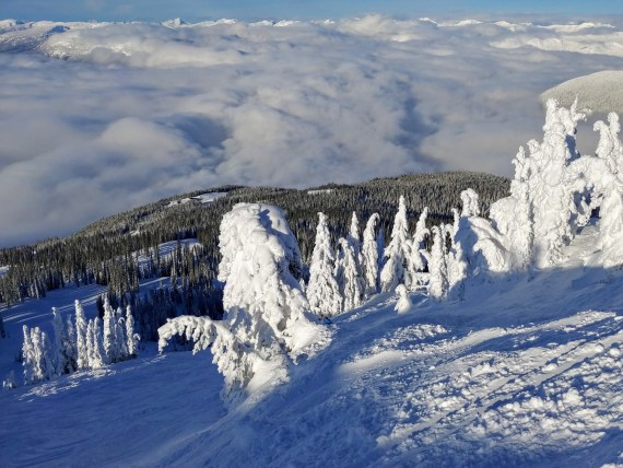 Revelstoke Mountain Resort scenery, British Columbia