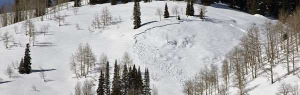 A snow pack demonstrating slab-style avalanche cracks.