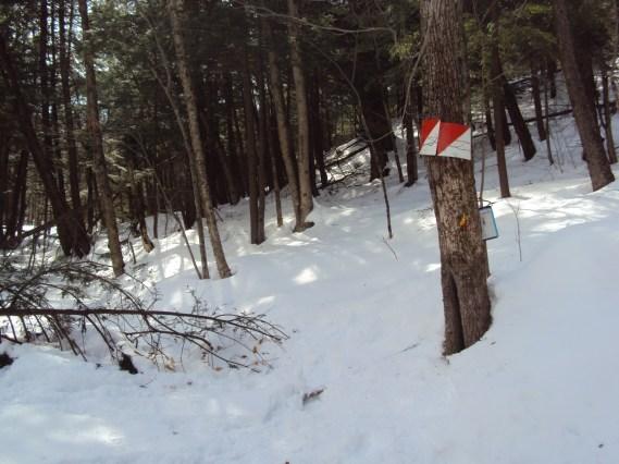 snowgaine race racer snow