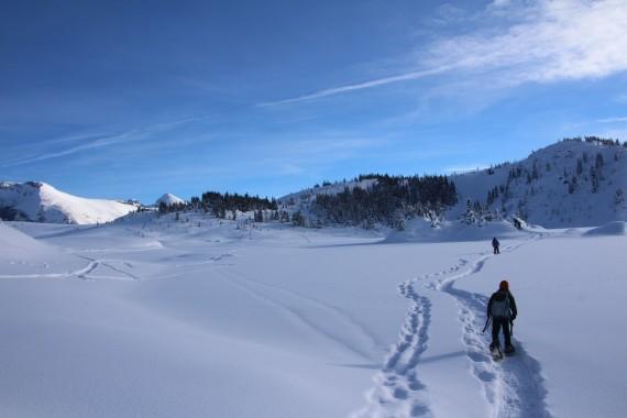 Snowshoeing Sunshine Meadows, Banff, Alberta