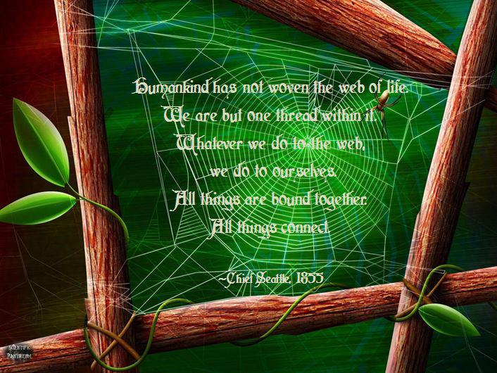 human-kind-has-not-woven-the-web-of-life-nature-quote