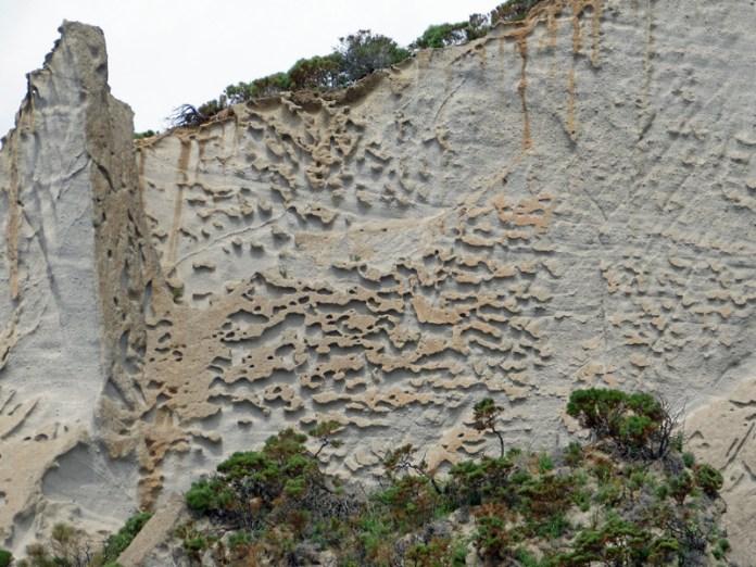 "La falesia ""geologicamente artistica"" di Ponza"