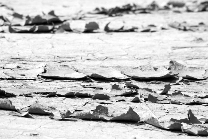 Scaglie di argilla