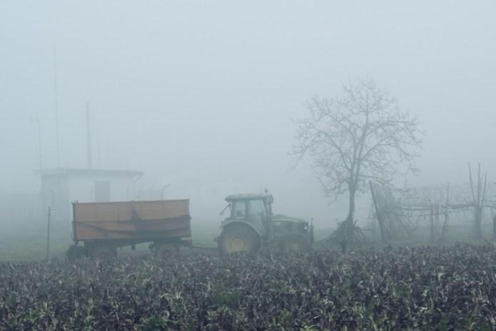 Lavorando con la nebbia
