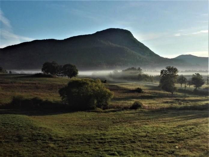 """La Foresta respira (Foresta Demaniale """"Feudozzo""""-Castel di Sangro)"""