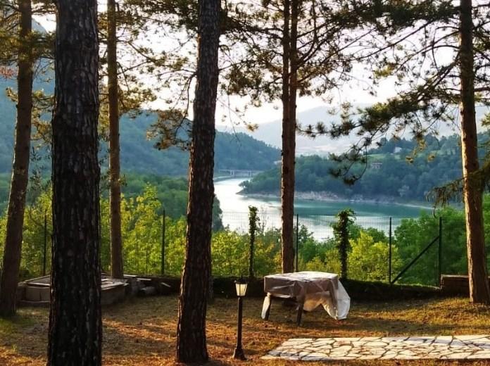 Alberi e lago (del Turano)