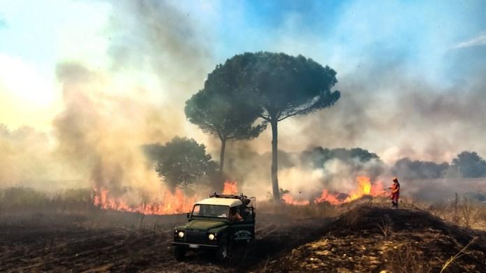 La bellezza brucia - Incendio doloso del Parco Archeologico Cellarulo in Benevento, 7/9/20