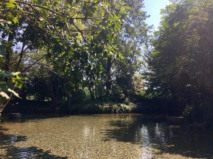 Fontanile Quarantine a Farinate, acque sorgive tra l'alta e la bassa pianura dal medioevo ad oggi