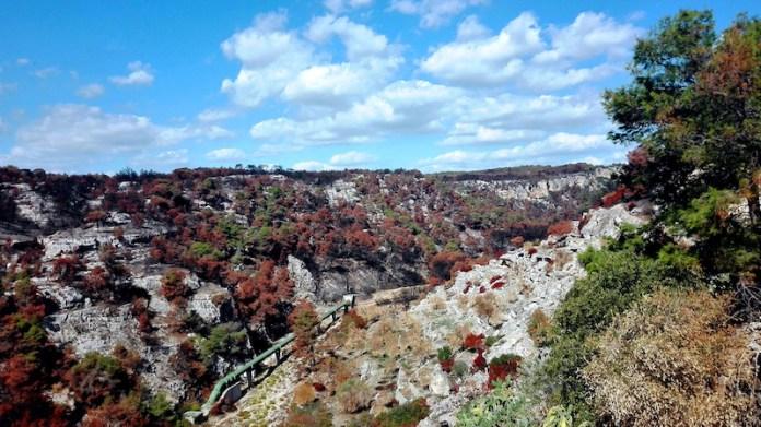 Parco delle Gravine a due mesi dall'incendio (2017 Palagianello)