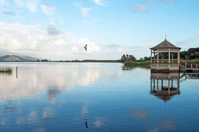 """""""Un tranquillo volo sul Lago"""" - Lago di Massaciuccoli - Torre del lago"""