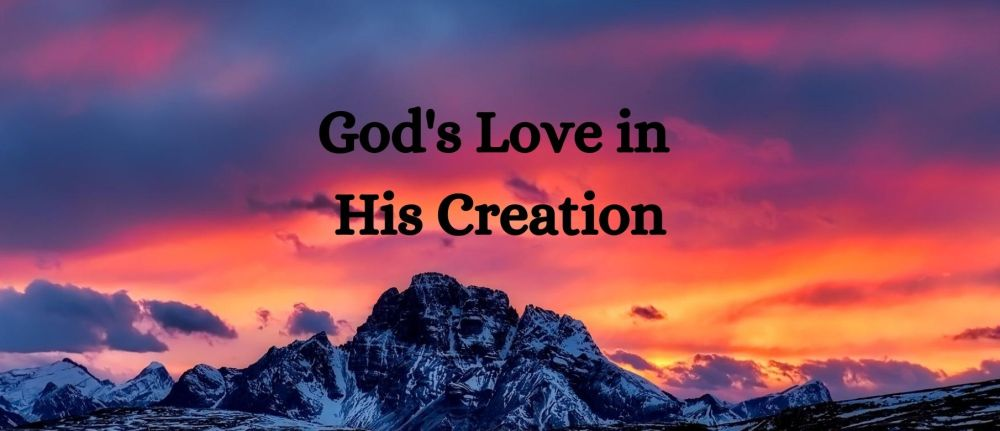 Gods Love In His Creation