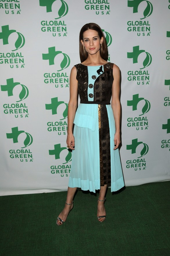 14th Annual Global Green Pre Oscar Gala