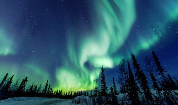 Benarkah, Suara Misterius di Samudra Arktik Berasal dari Paus?