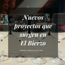 Proyectos que abanderan el vino de El Bierzo desde sus inicios