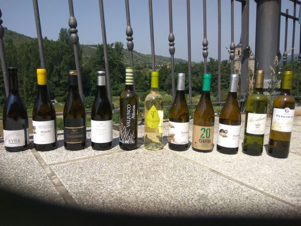 Medallas para los vinos de nuestro especial de DO Tierra de León en los premios VinDuero 2018
