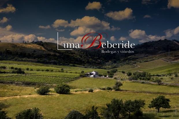 Luna Beberide Bodegas y Viñedos