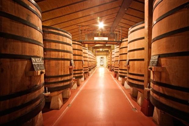 foudres en la elaboración de vinos