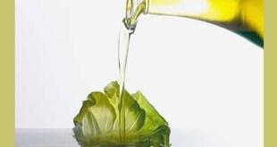 Alimentos Con Grasas Saludables Que Debes Consumir