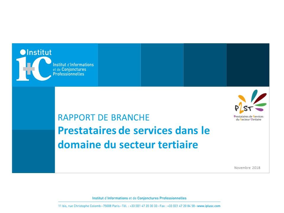 Rapport De Branche Prestataires Novembre 2018 Federation Cgt Des