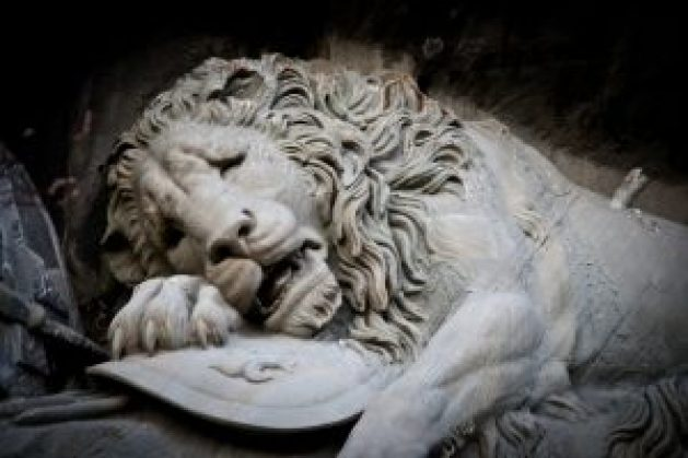 shame-lion