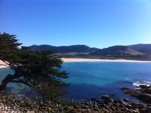 Beautiful Carmel